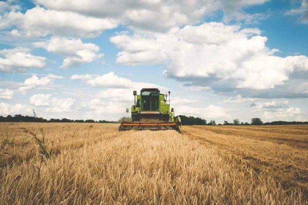 farming status, agriculture