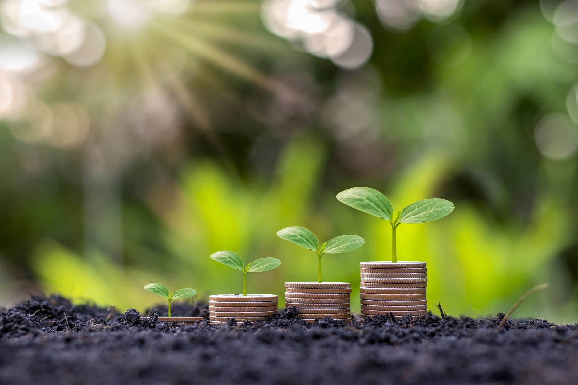 making your finances more sustainable